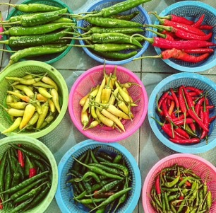 spicy variety of chiles
