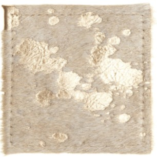 metallic cowhide coaster, World Market