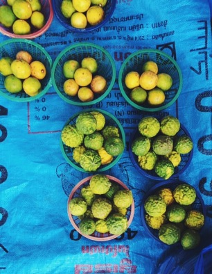 Keffir Limes (bumpy skin vs smooth)